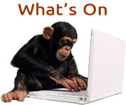 Whats On Chimp